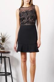 Greylin Freya Embroidered Dress - Product Mini Image