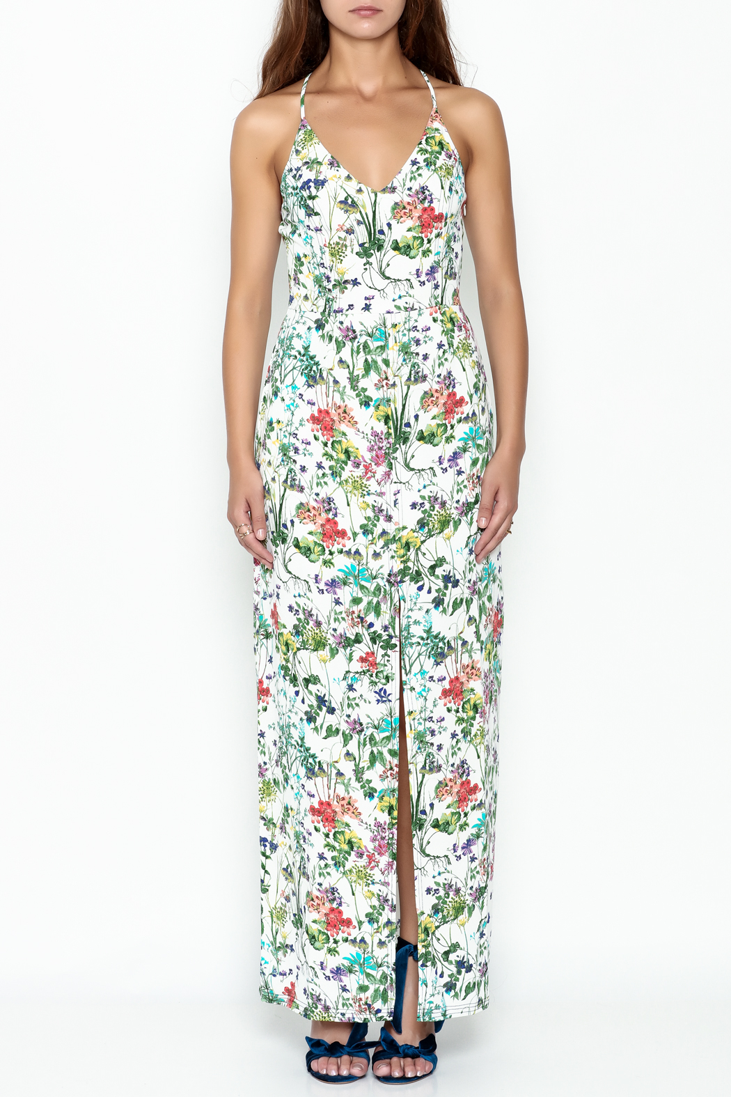 Greylin Floral Maxi Dress - Front Full Image