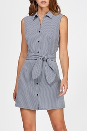 Greylin Jena Gingham Dress - Product Mini Image