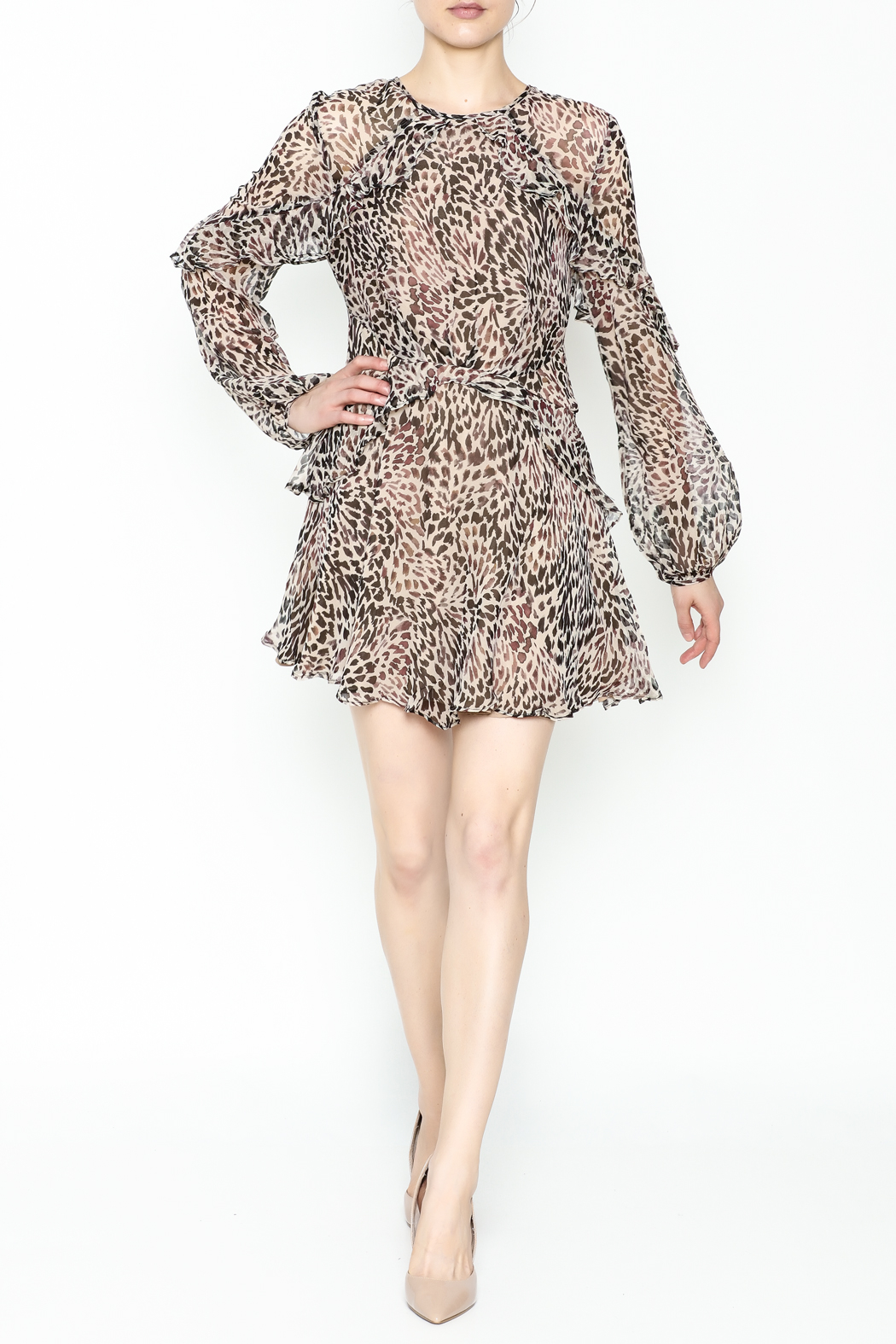 Greylin Larson Silk Dress - Front Cropped Image