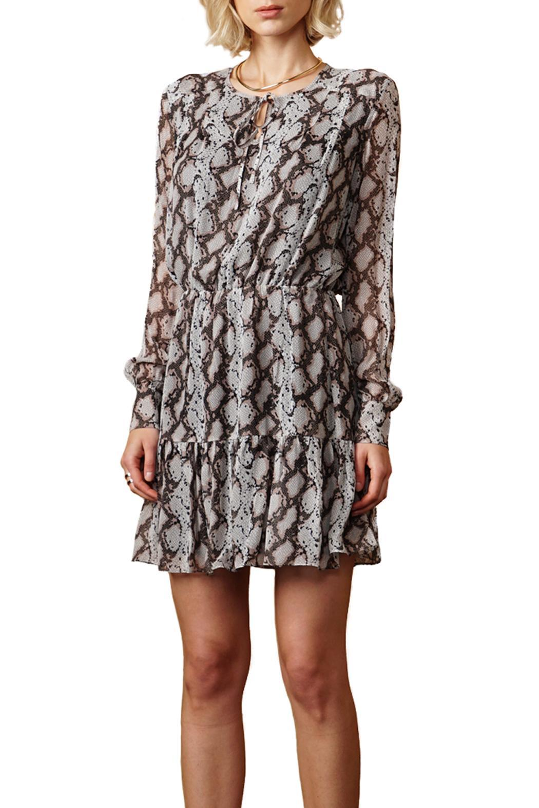 Greylin Sellia Pinktucked Dress - Front Cropped Image