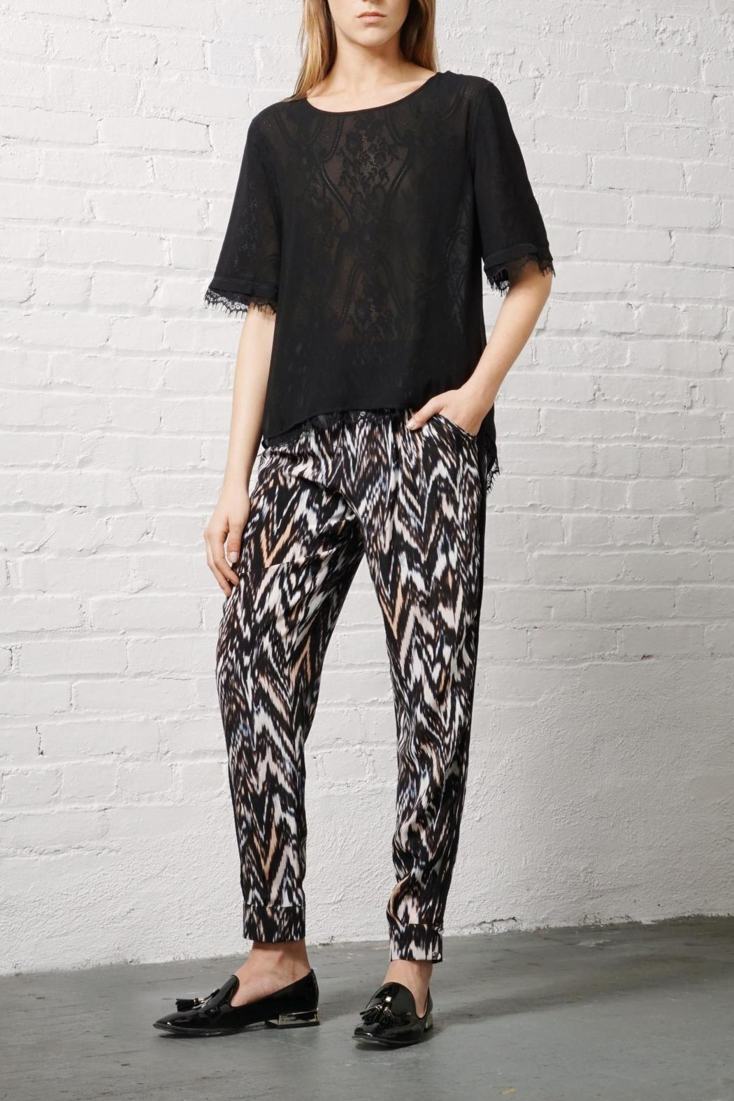 Greylin Silk Ankle Trouser - Front Cropped Image