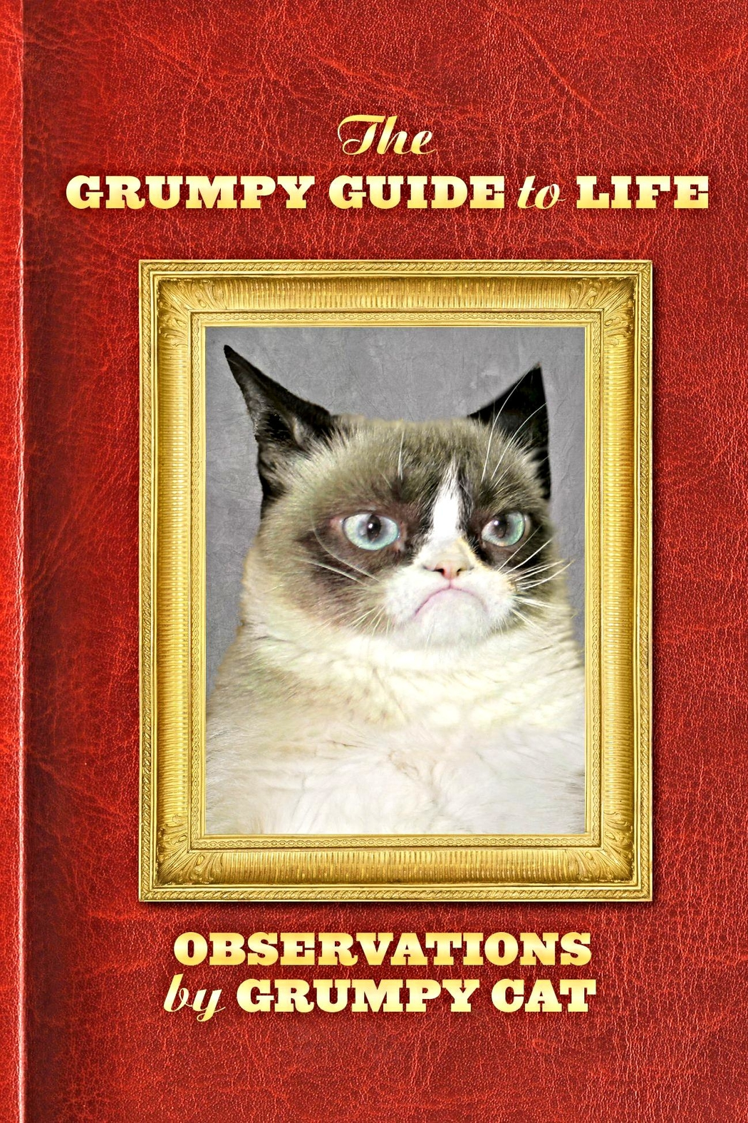 Chronicle Books Grumpy Guide - Front Cropped Image