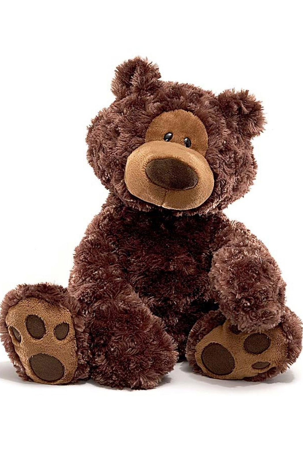 Gund Chocolate Philbin Bear - Main Image