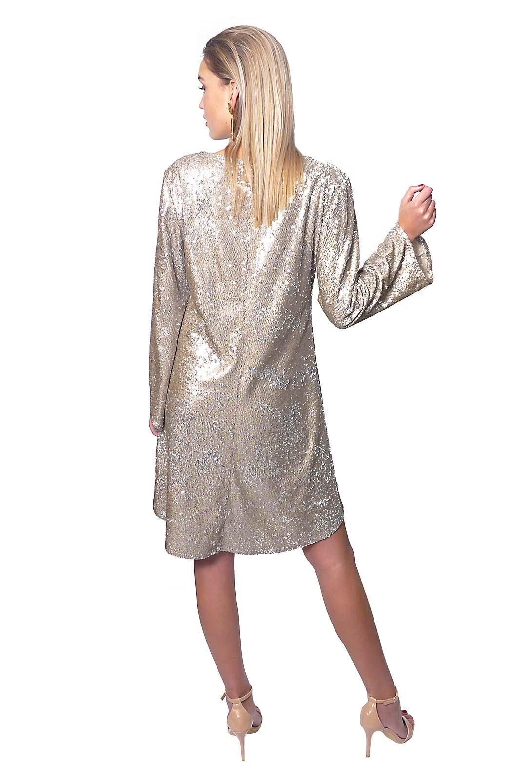 Gypsetters Dress A-Line Sequin - Back Cropped Image