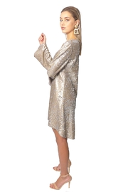Gypsetters Dress A-Line Sequin - Side cropped