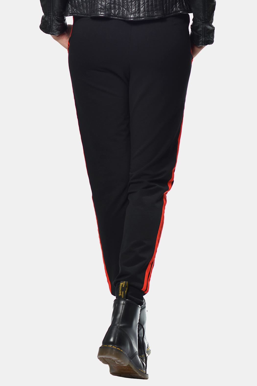 Gypsetters Pants Red Stripes - Side Cropped Image
