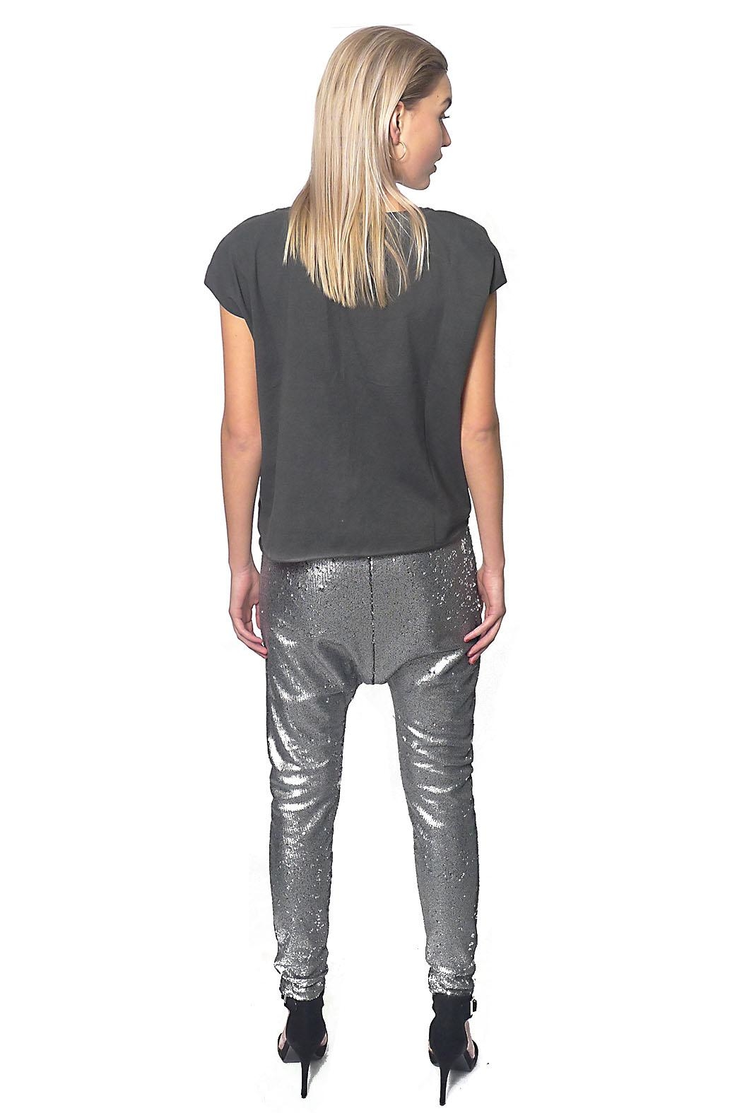 Gypsetters Pants Sequin Lowrider - Side Cropped Image