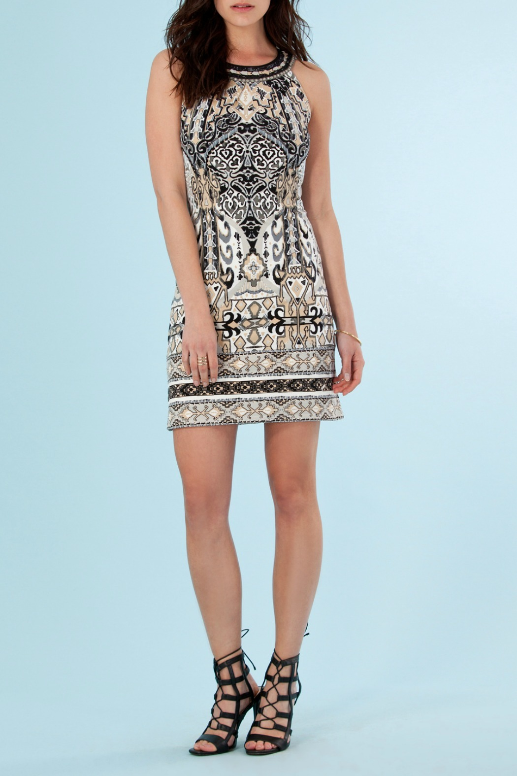 9b46e60adc1c1 Hale Bob Sarila Sleeveless Jersey Dress from New York by Hale Bob ...