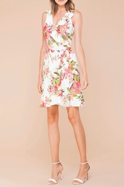 Hale Bob Althaea Flounce-Wrap Dress - Product Mini Image