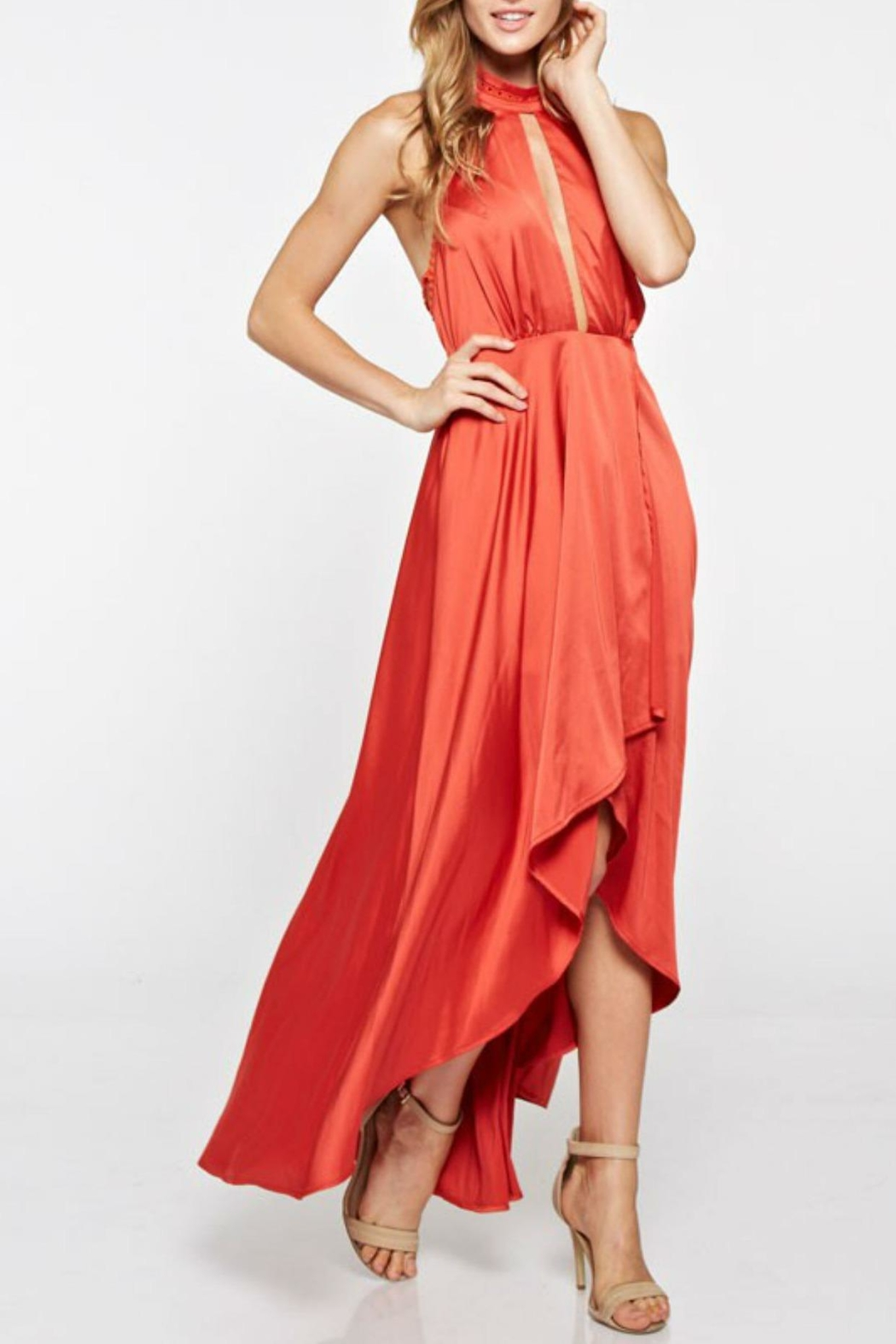 the clothing company Halter Long Dress - Front Full Image