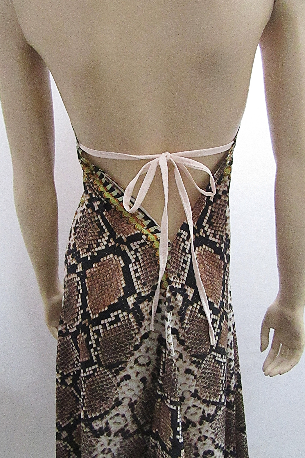 Indian Tropical HALTER SATEEN PRINT DRESS - Back Cropped Image