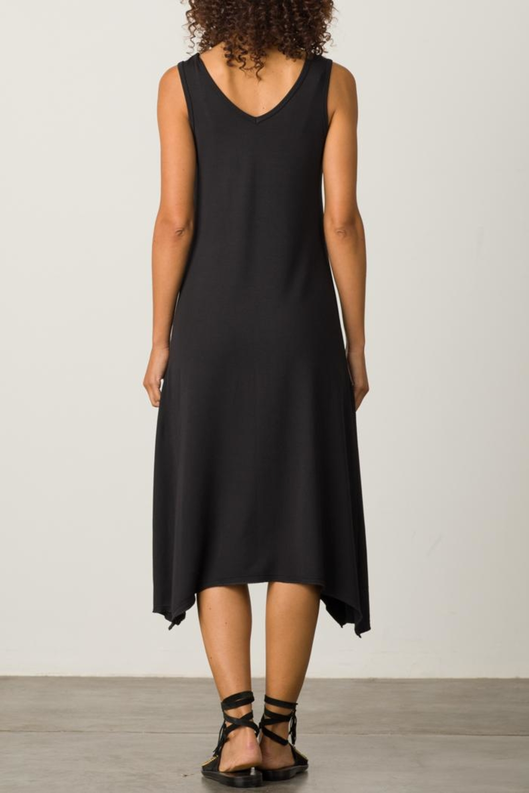 Margaret O'Leary Handkerchief Vee Dress - Side Cropped Image