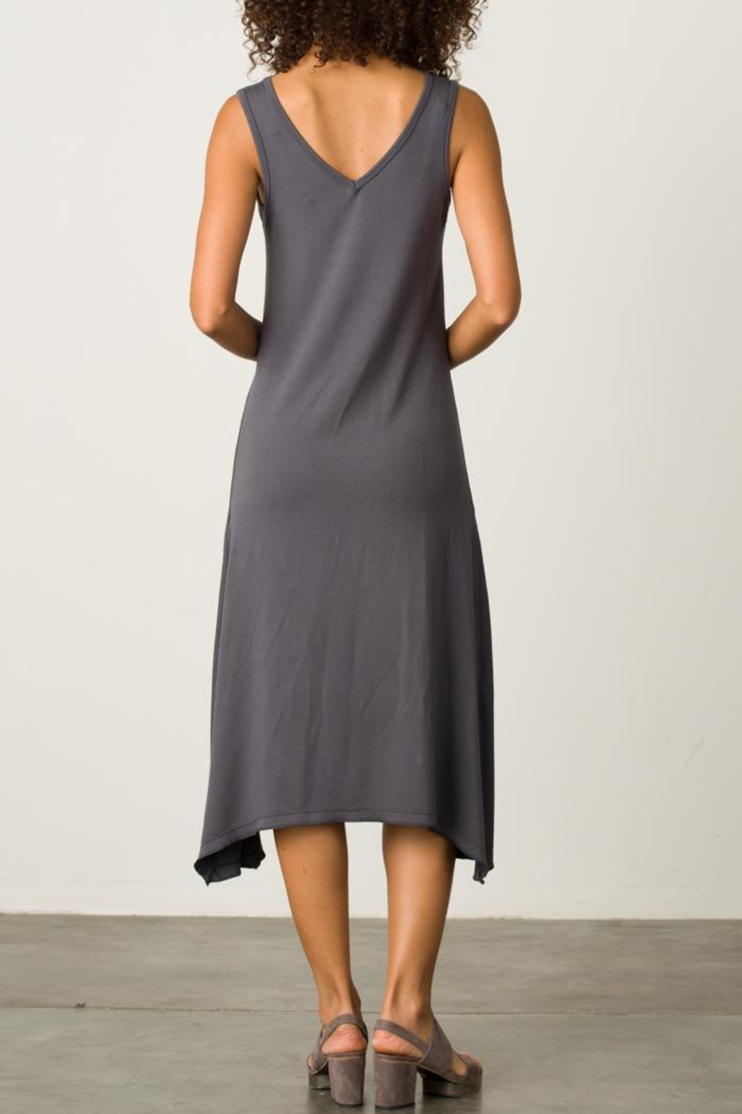Margaret O'Leary Handkerchief Vee Dress - Back Cropped Image