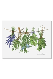 Sally Eckman Roberts Hanging Herbs Print - Front cropped