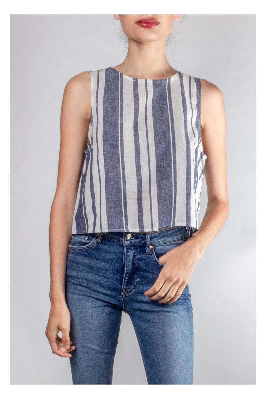 Lumiere Harbor Striped Crop-Top - Main Image