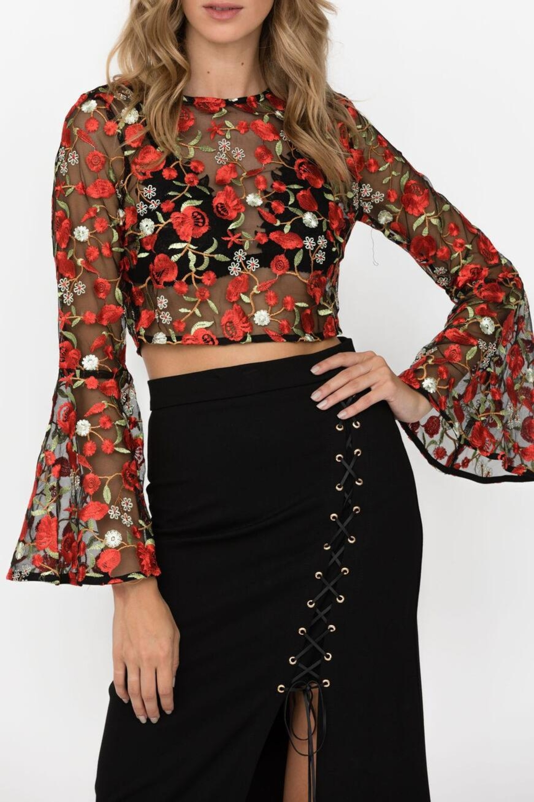 Haute Rogue Carley Embroidered Crop - Main Image