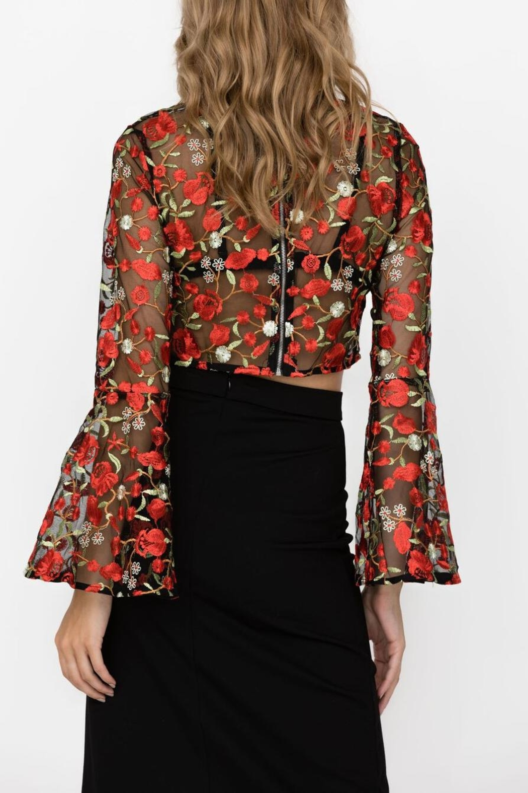 Haute Rogue Carley Embroidered Crop - Back Cropped Image