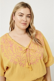 Hayden Gauzey Embroidered Tunic - Other