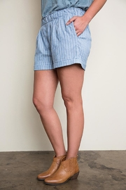 Hayden Los Angeles Blue Striped Shorts - Front full body