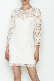 Heartloom Lace Mini Dress - Product Mini Image