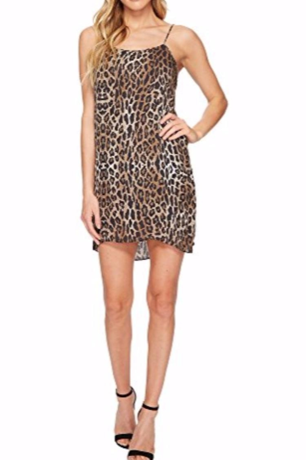 Heather Leopard Slip Dress - Front Cropped Image