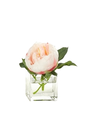 Heather Scott Home & Design Cream Pink Peony - Product Mini Image