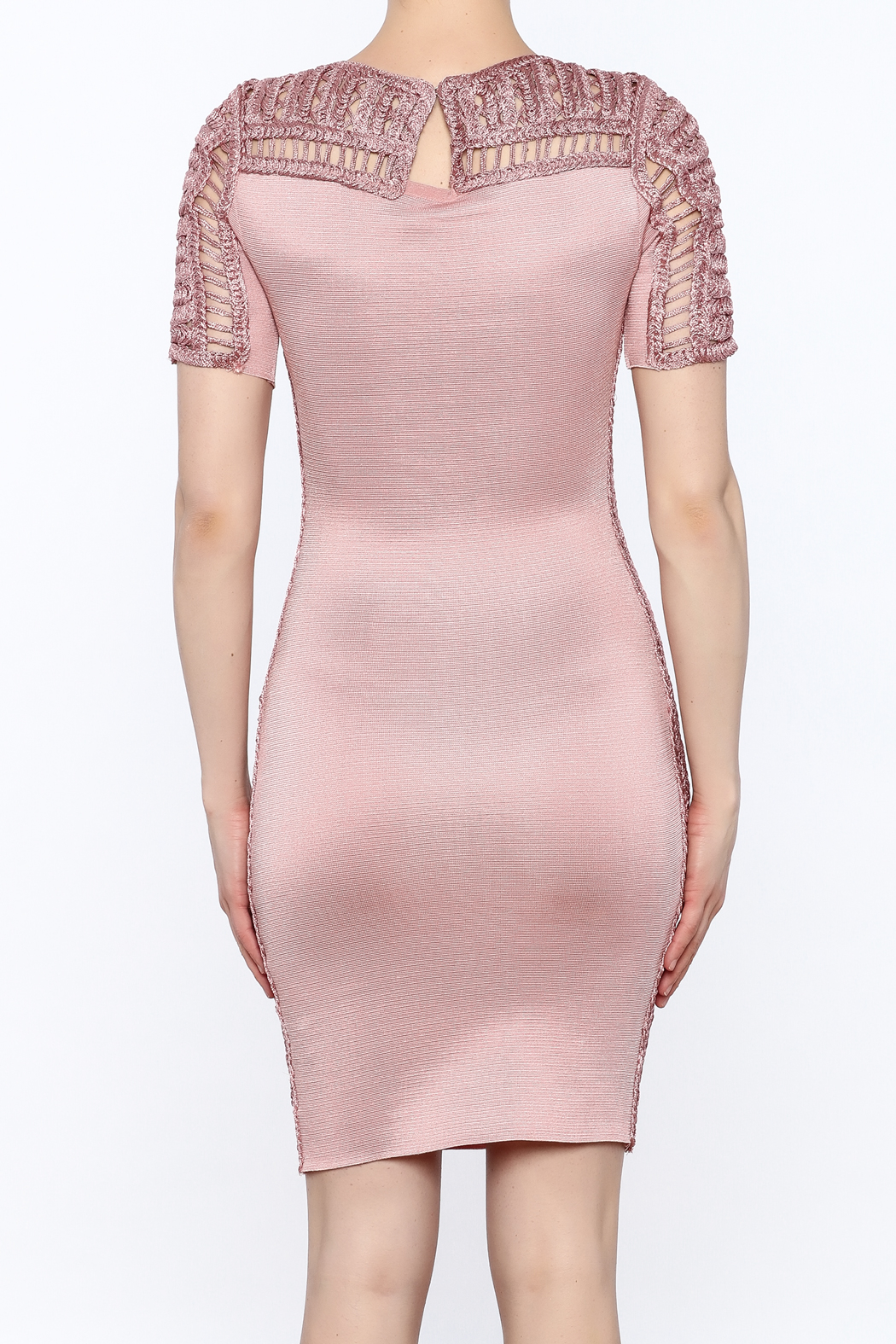 Heiress Boutique Pink Bandage Dress - Back Cropped Image
