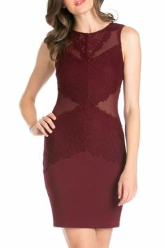 Shoptiques Product: Burgundy Bodycon Dress