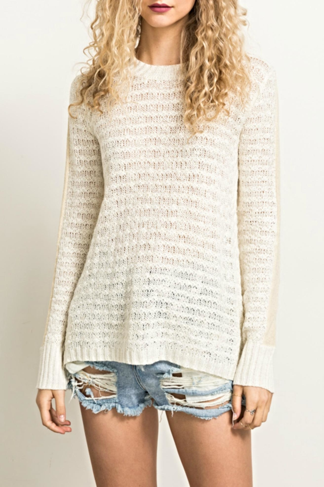 Hem & Thread Knit Ruffle Sweater - Front Cropped Image