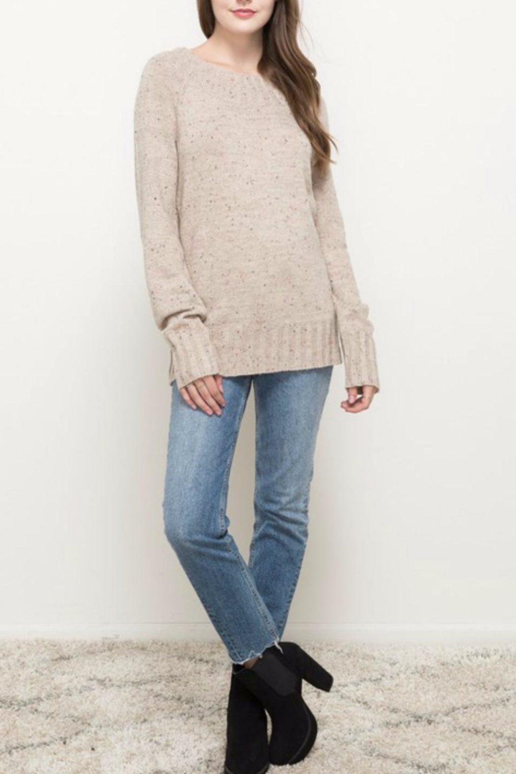 Hem & Thread Oatmeal Sprinkled Sweater - Back Cropped Image