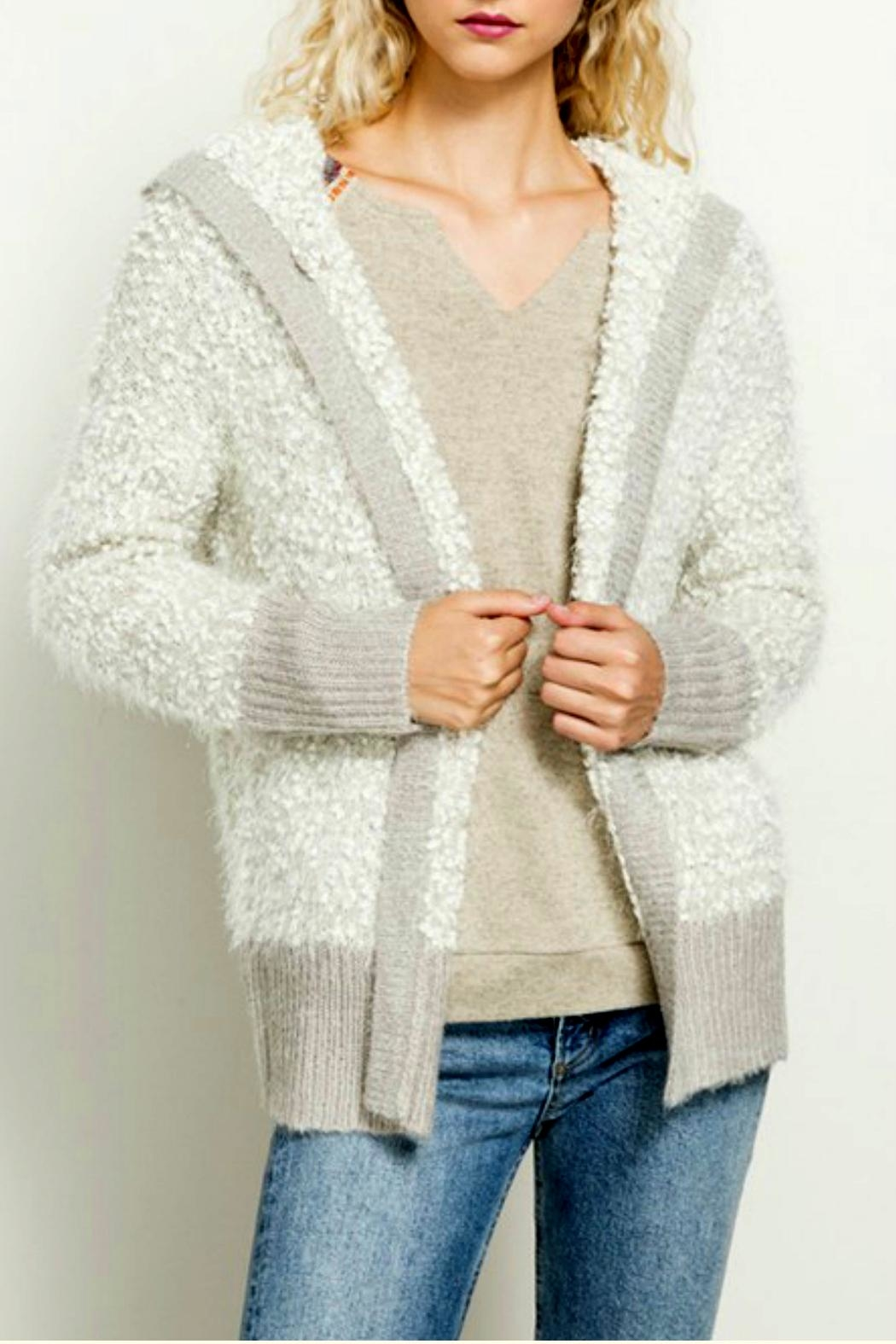 Hem & Thread Popcorn Hoodie Sweater - Front Cropped Image