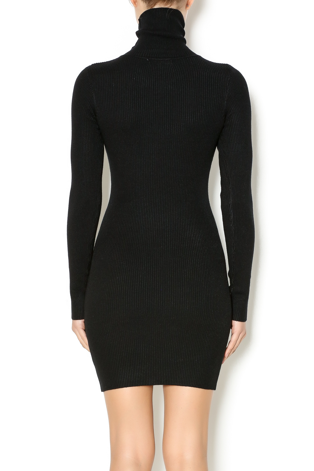 Hera collection Black Turtleneck Sweater Dress from Alabama by Lifted Boutique u2014 Shoptiques