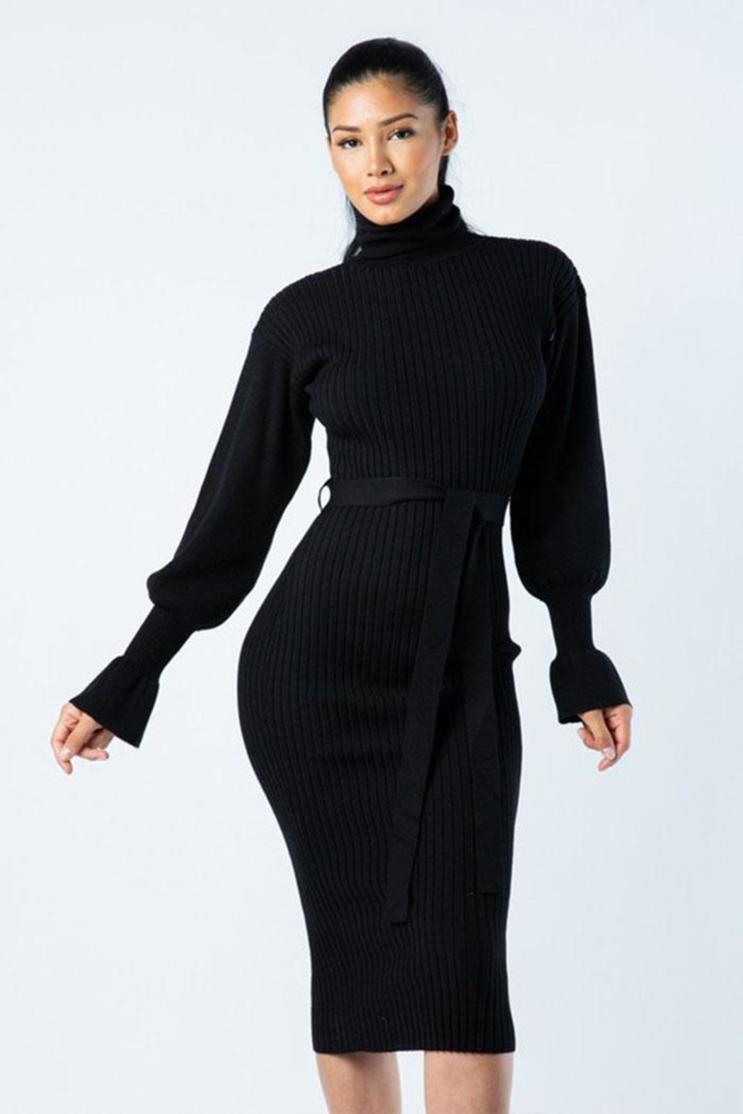 Hera Turtle Neck Dress - Side Cropped Image