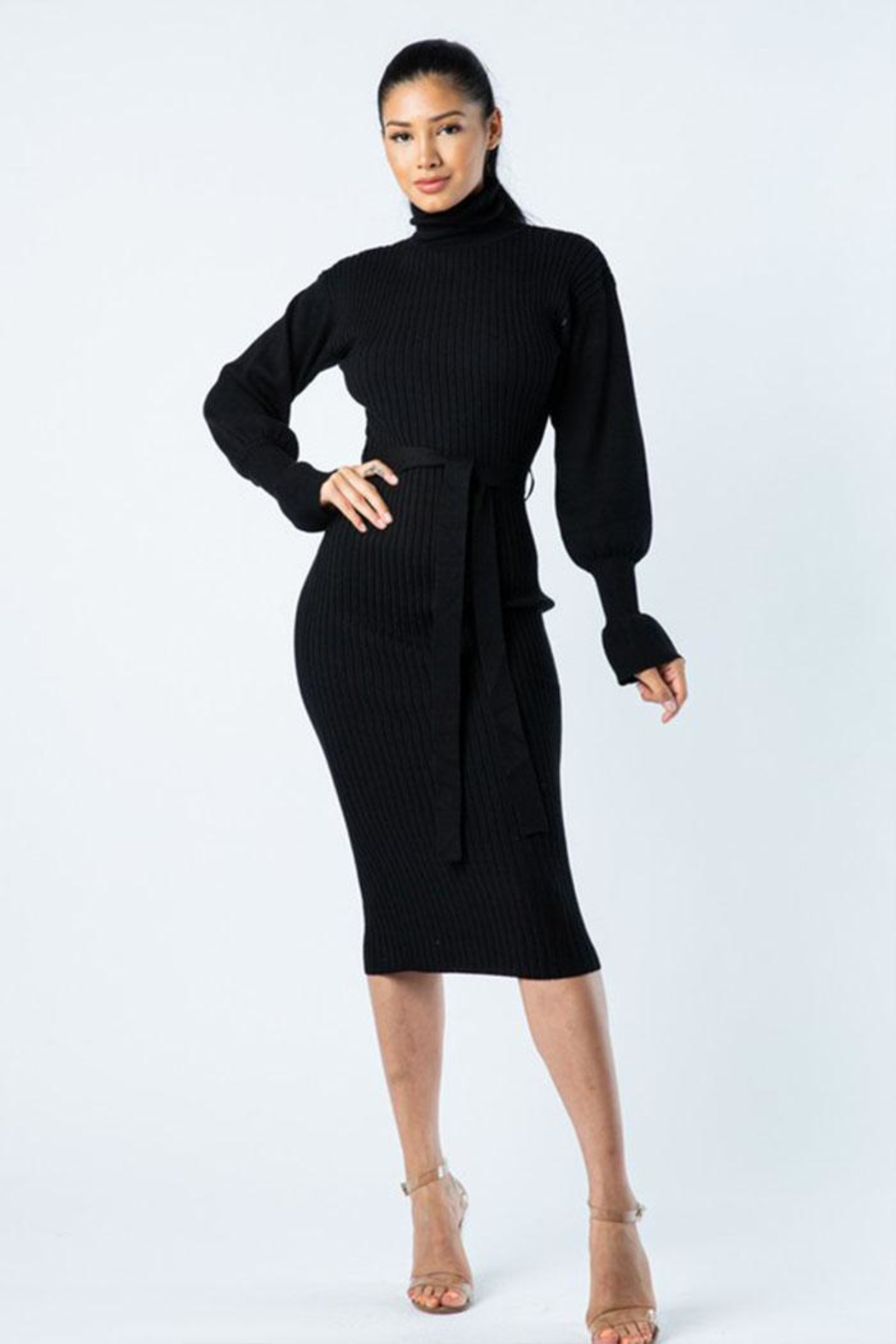 Hera Turtle Neck Dress - Front Cropped Image