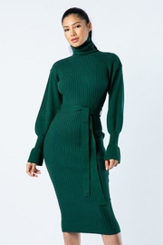 Hera Turtle Neck Dress - Front cropped