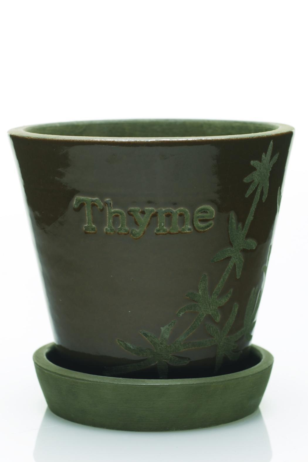 The Birch Tree Furniture Herb Pot - Front Cropped Image