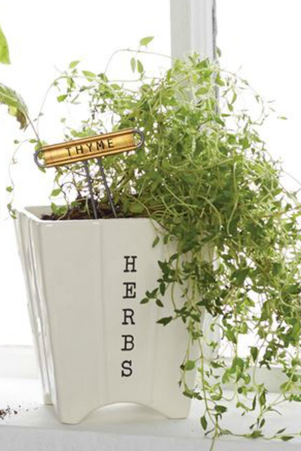 Mud Pie Herb Pot/marker Set - Front Cropped Image