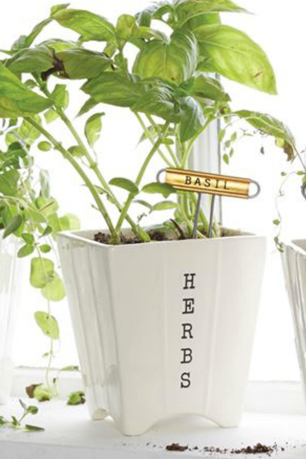 Mud Pie Herb Pot/marker Set - Main Image