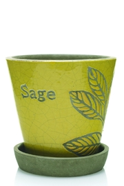 The Birch Tree Furniture Herb Pot - Product Mini Image