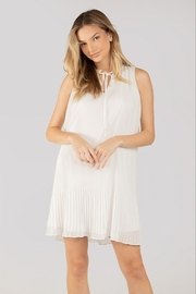 Naked Zebra  High Neck Pleated Dress - Product Mini Image