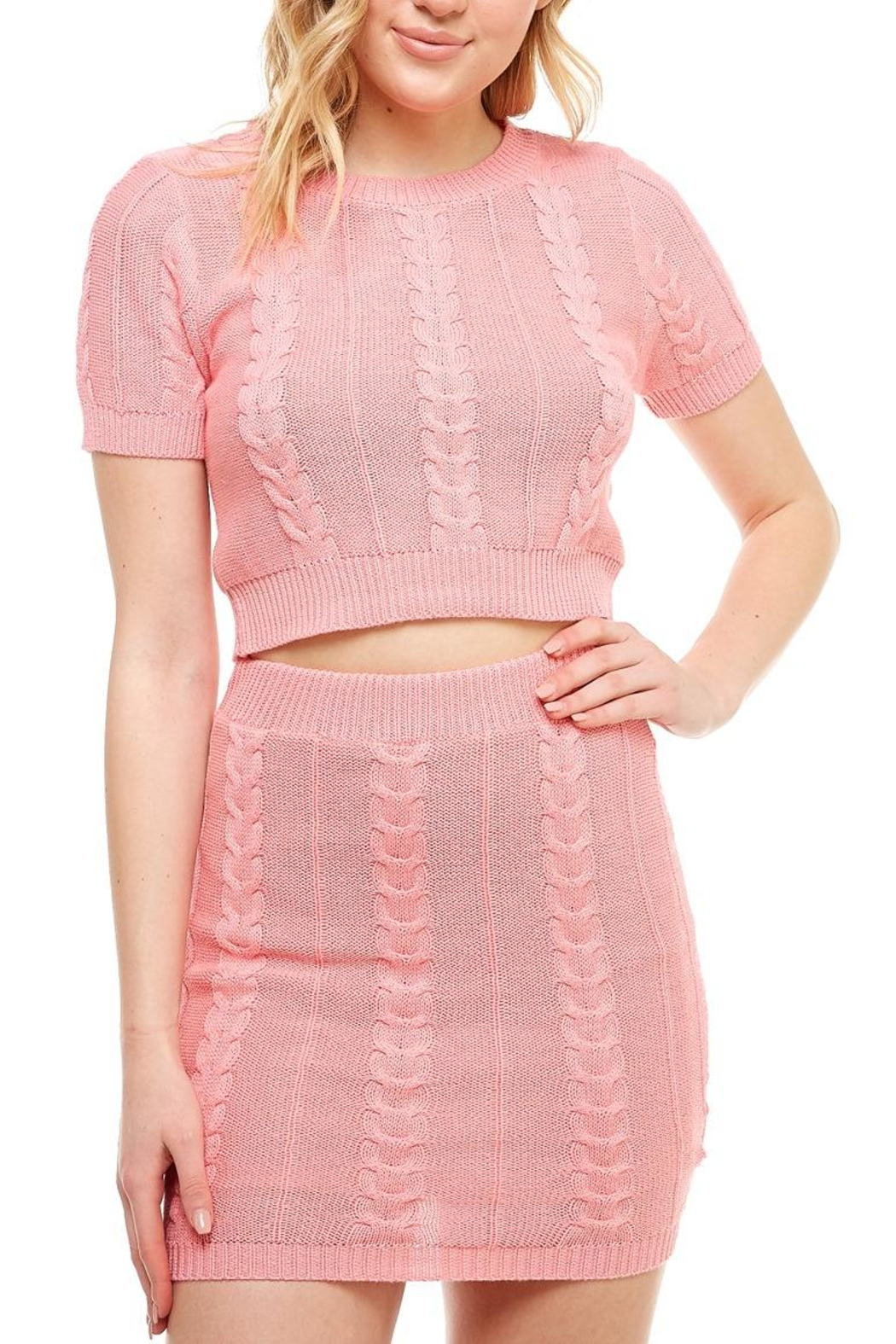 Hot & Delicious High-Neck Sweater Skirt-Set - Back Cropped Image