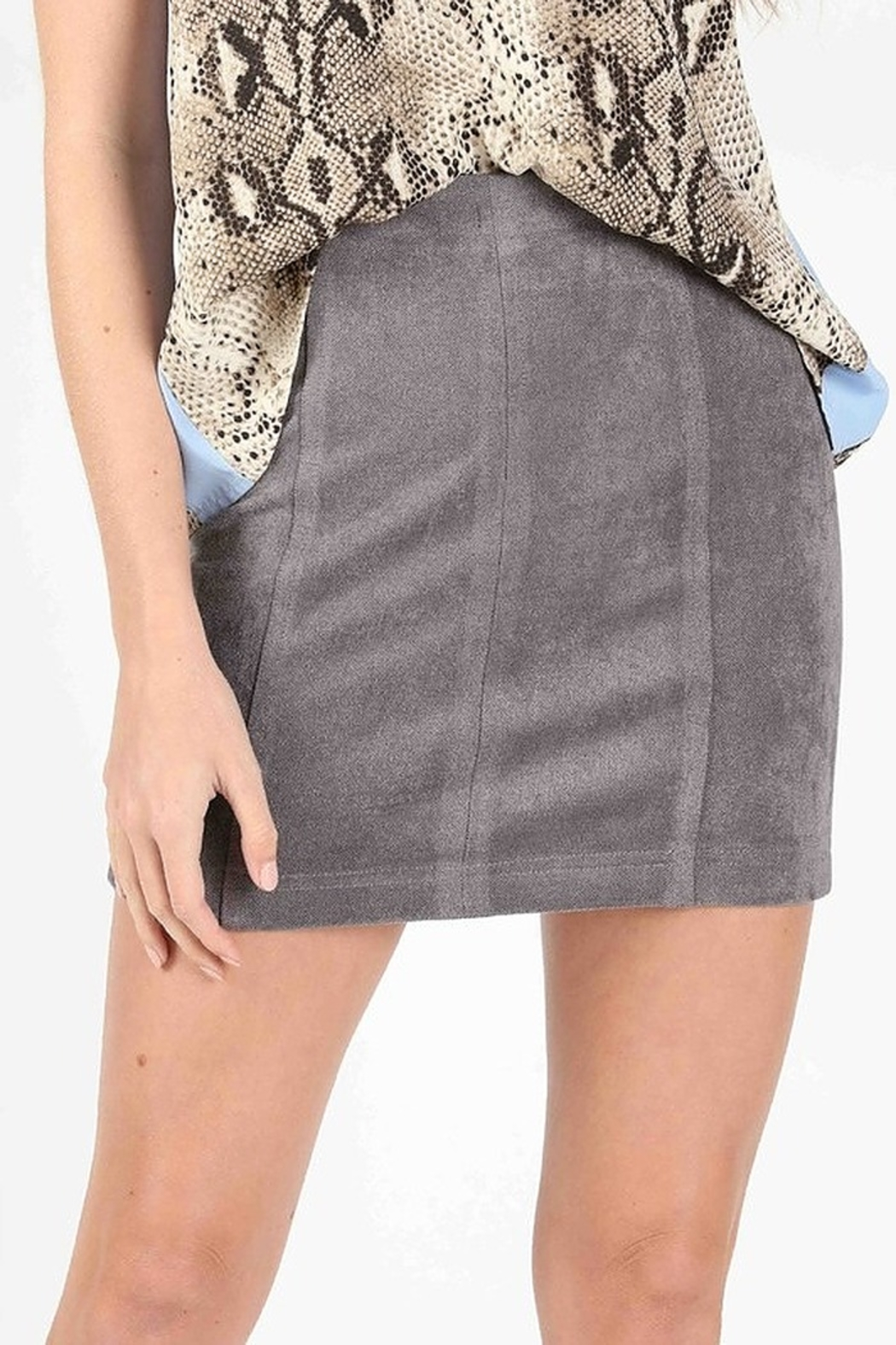Wild Honey High Waist Suede Skirt - Front Cropped Image
