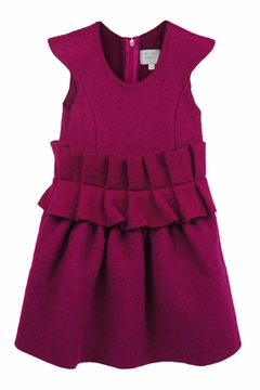 Shoptiques Product: Zoe Ruffle Dress