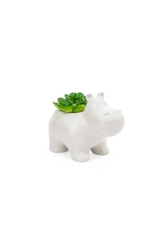 Torre & Tagus Hippo Faux Succulent - Product Mini Image