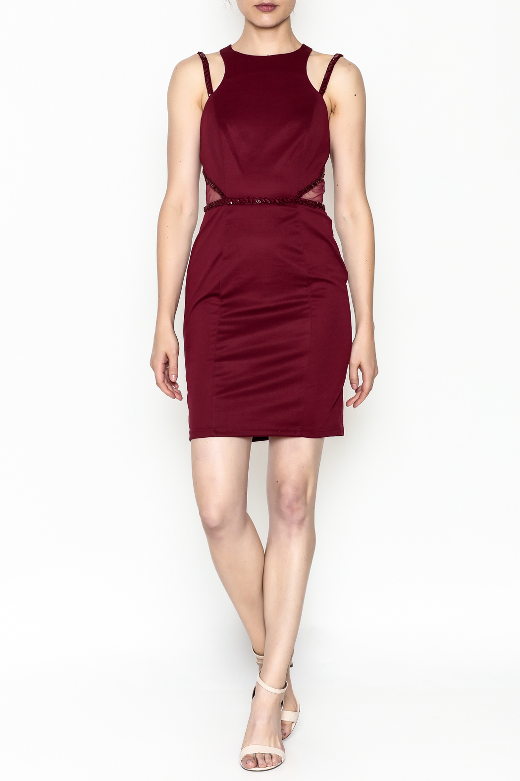 Minuet Holly Cocktail Dress - Side Cropped Image