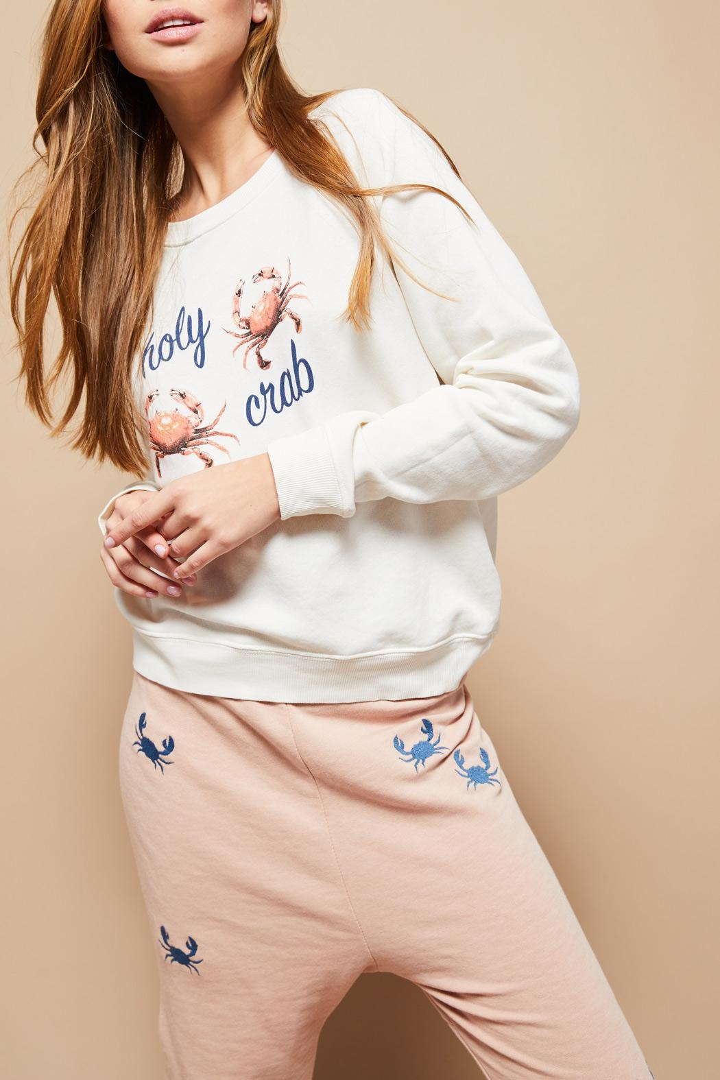 All Things Fabulous Holy Crab Sweatshirt - Front Cropped Image