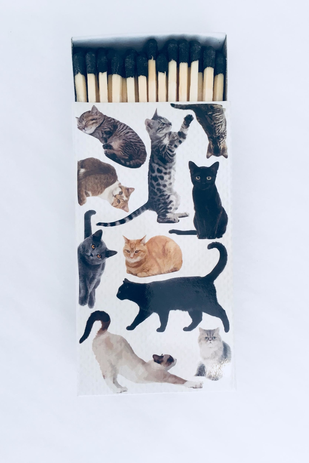 Homart Multi Cat Matches - Front Cropped Image