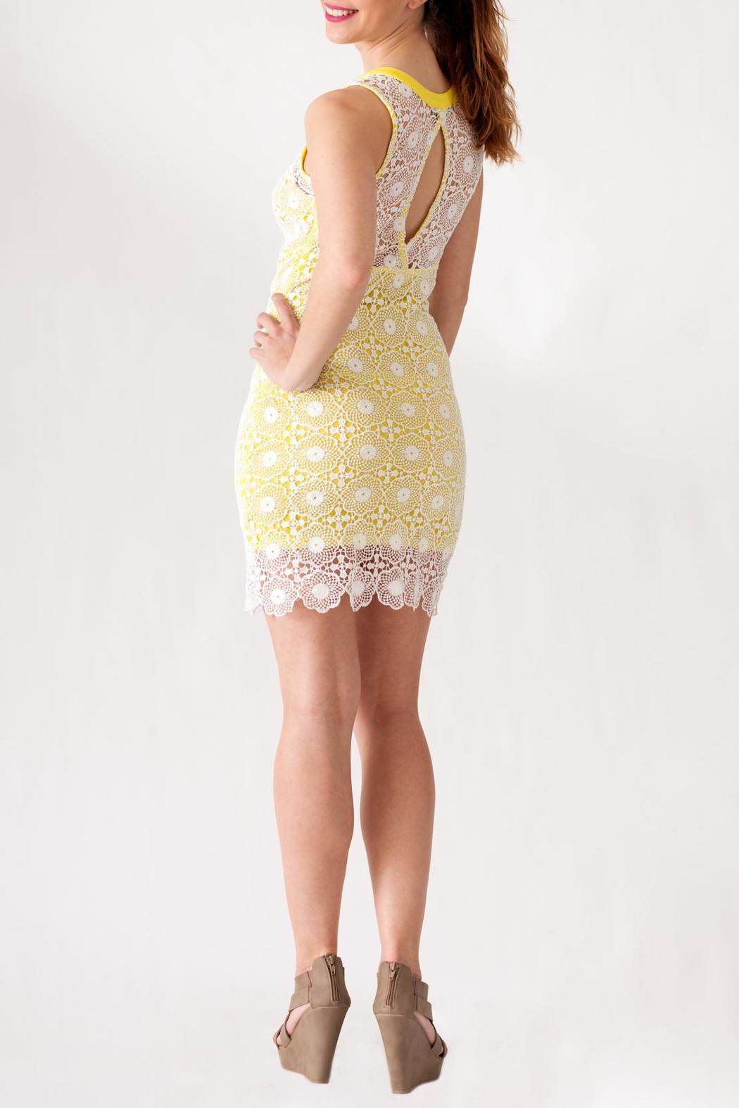 Hommage Lace Overlay Dress - Side Cropped Image