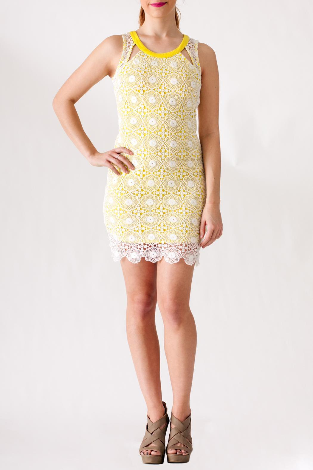 Hommage Lace Overlay Dress - Front Cropped Image